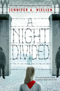 night divided book cover